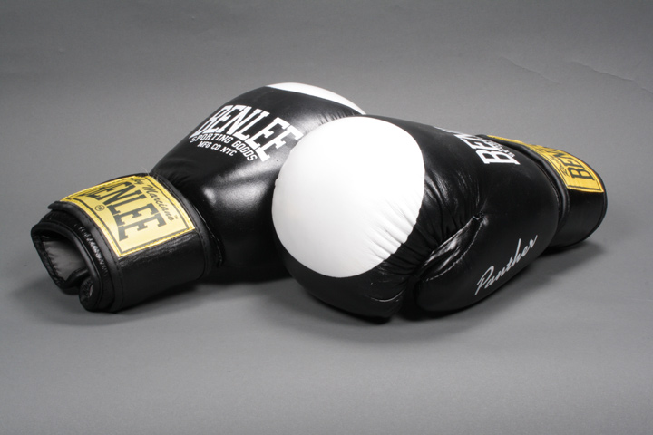 Boxing Gloves Panther