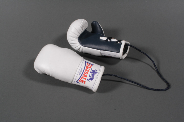 Mini Boxing Glove